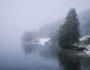 Nebel-Fotografieren-Cover